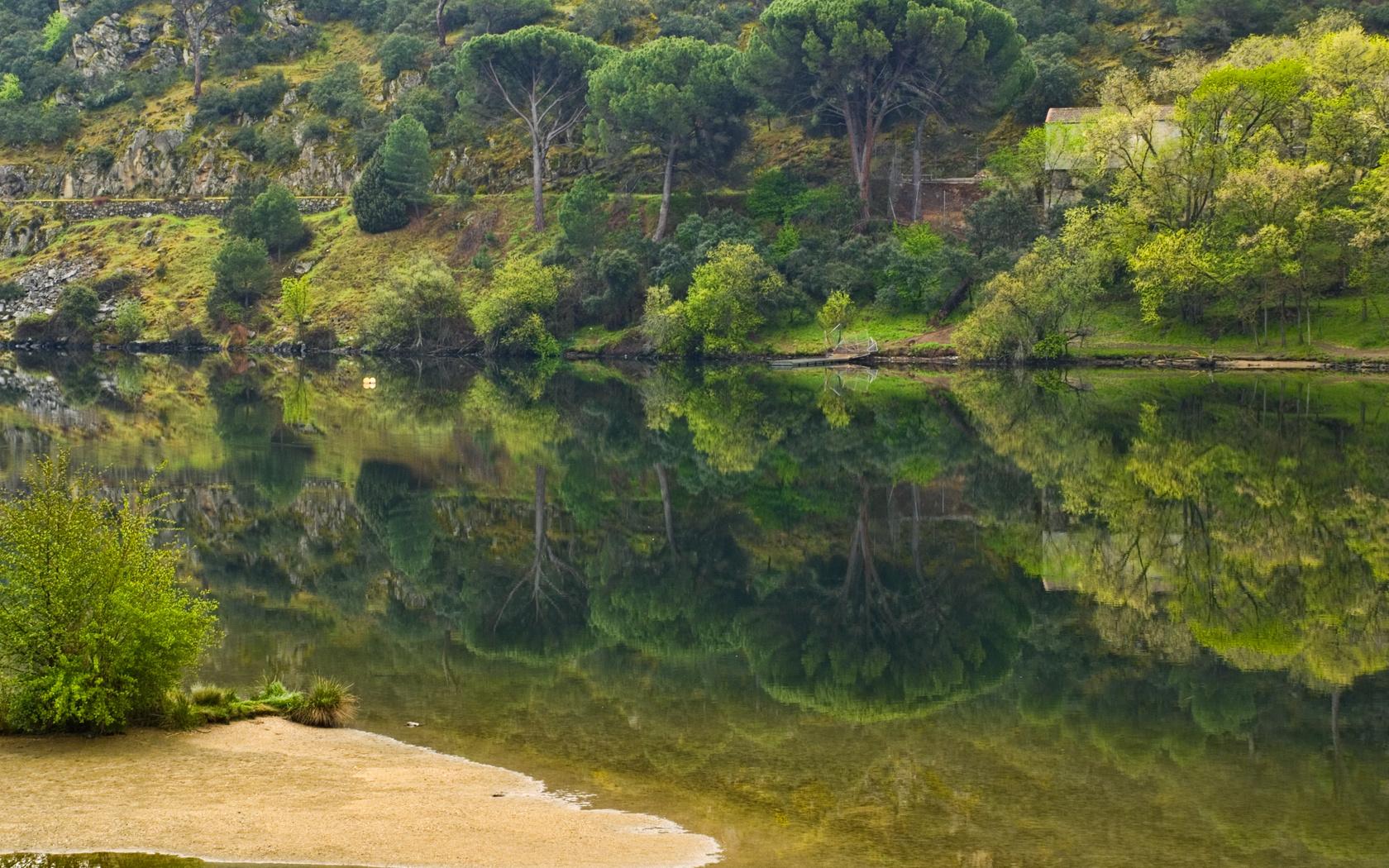 Природа пейзаж лето река деревья