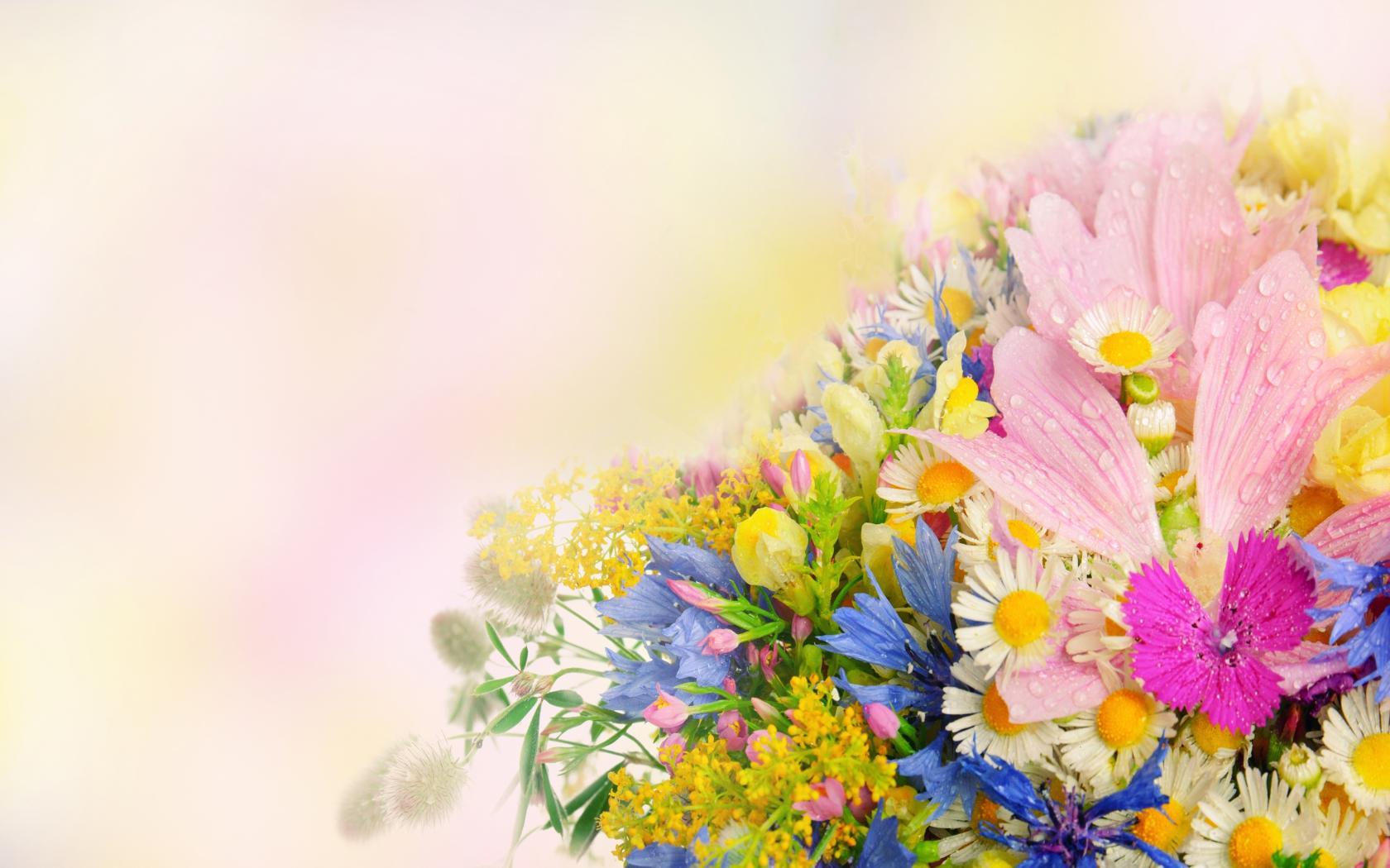 Природа пейзаж лето цветы букет
