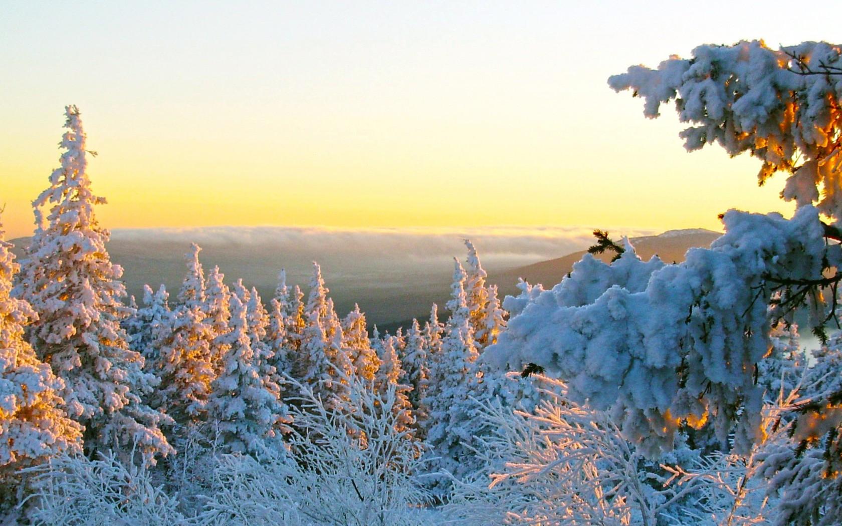 Картинки на рабочий стол конец зимы