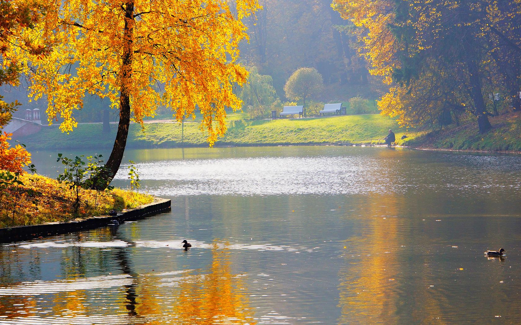 Пейзаж реки озера осень пруд река