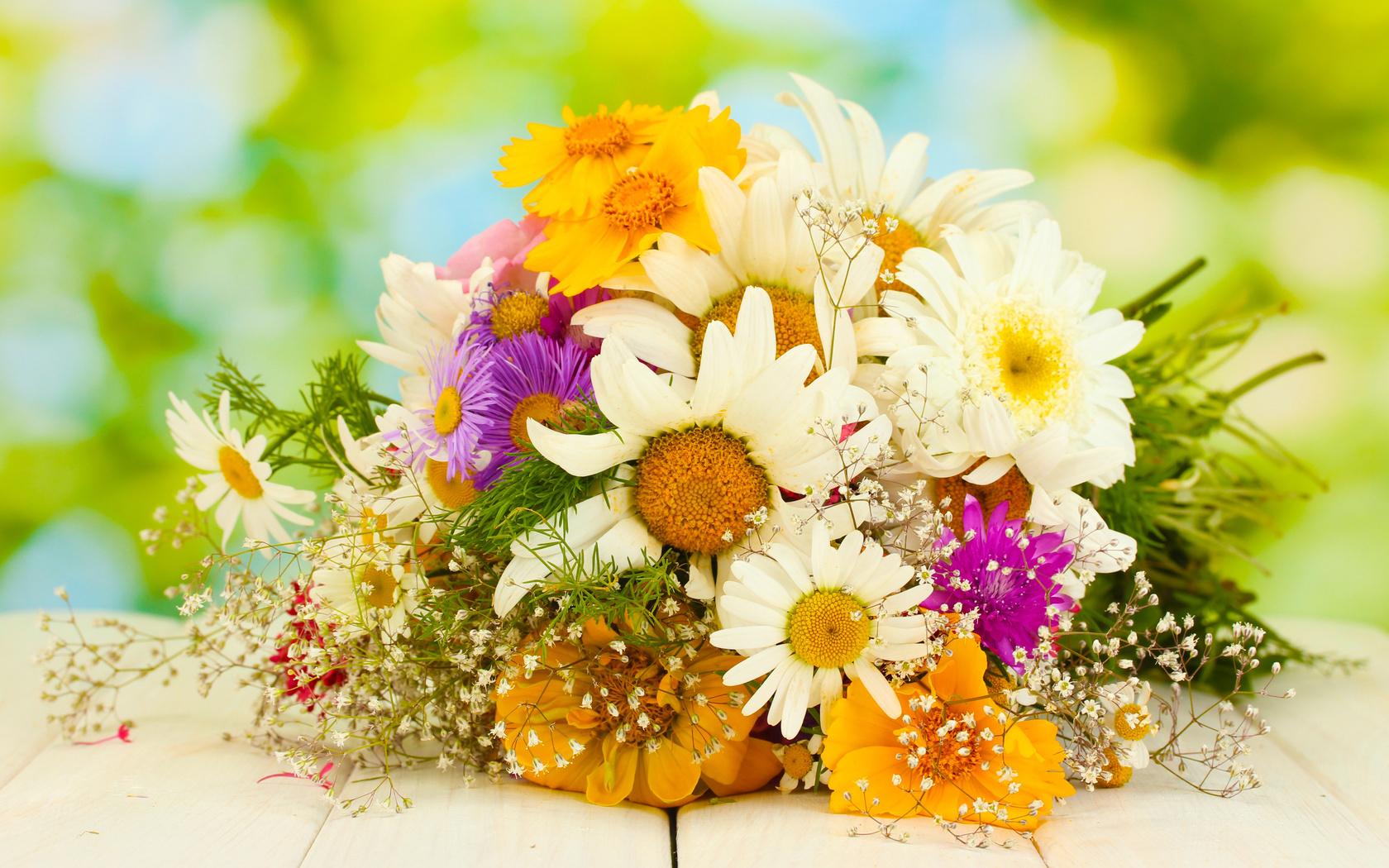 Добавил обои для рабочего стола цветы