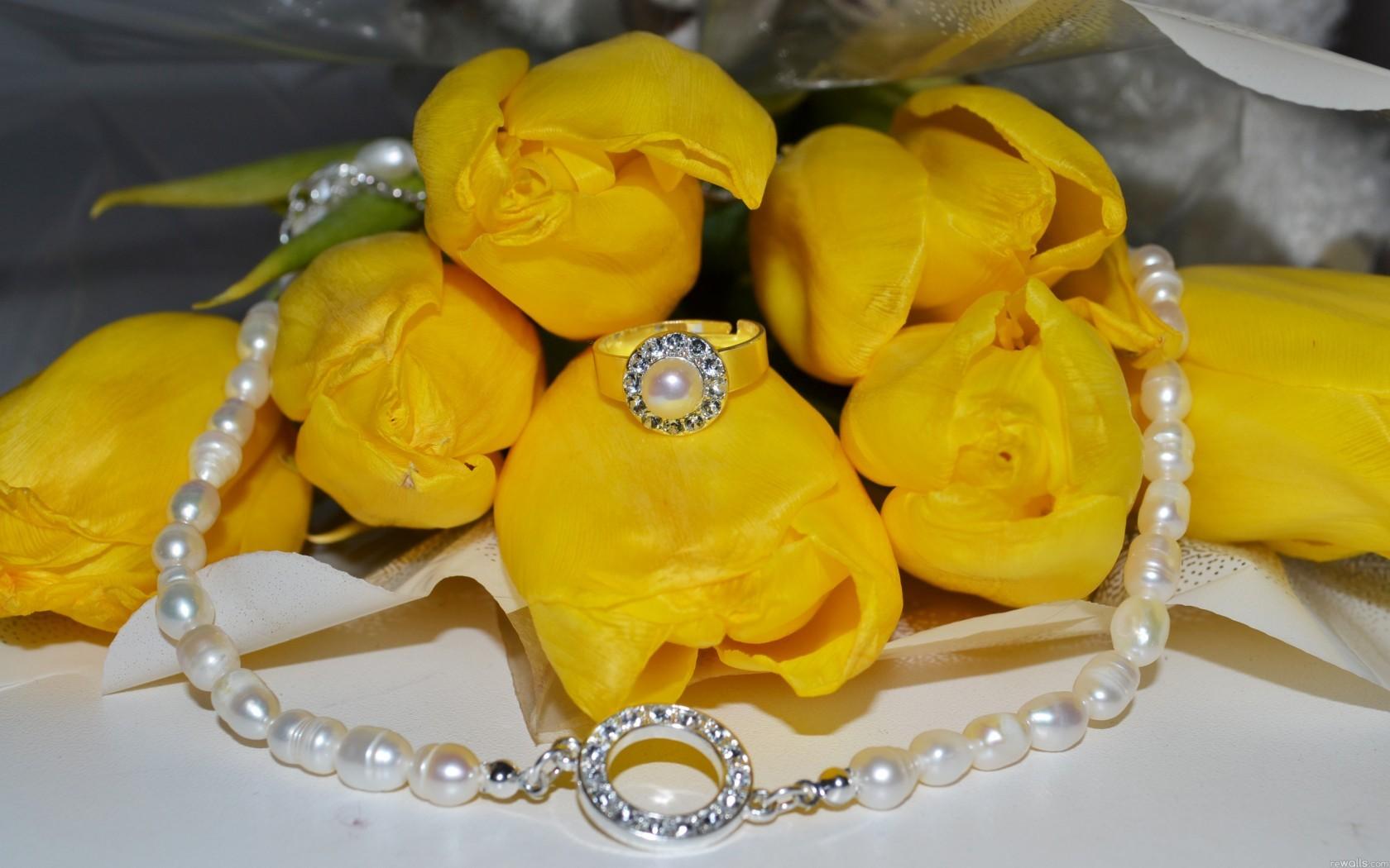 Фото цветы тюльпаны в высоком качестве