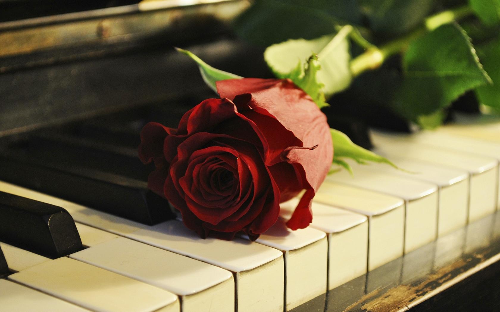 Красивые открытки и музыка