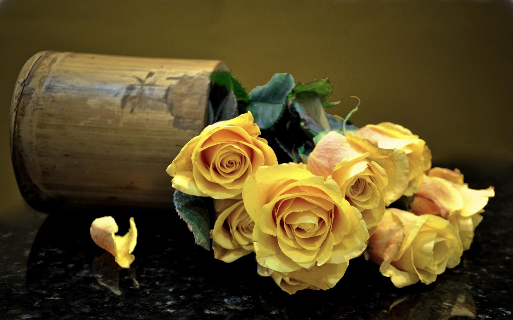 Природа пейзаж цветы розы цветы ваза